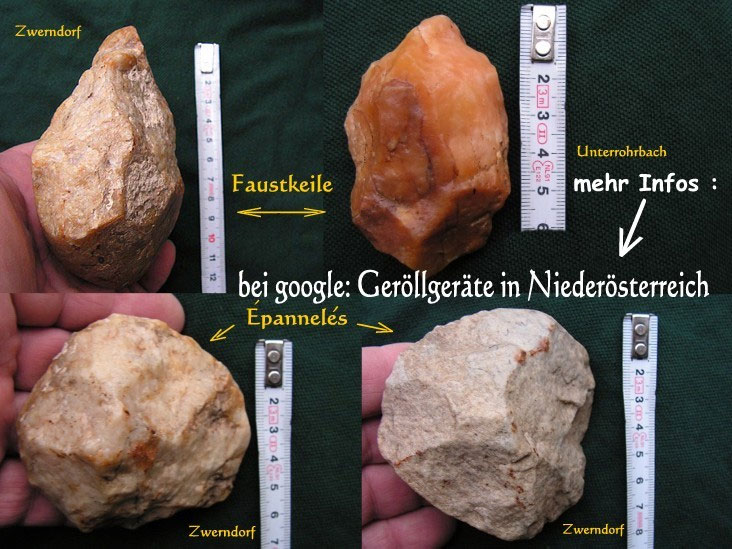 neandertaler geschichte pdf